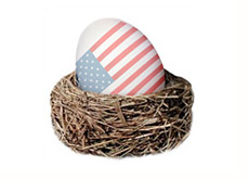 -- nest egg with american flag on it --