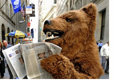 wall street journal - bear reading