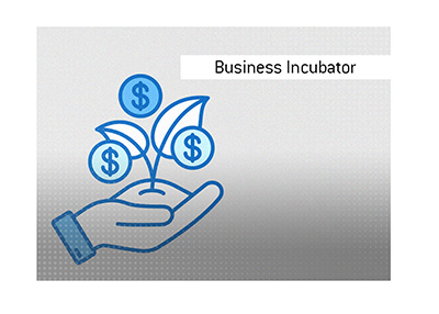 The meaning of the term Business Incubator is explained and illustrated.