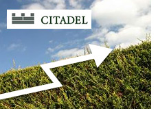 -- Citadel hedge fund on the rise --