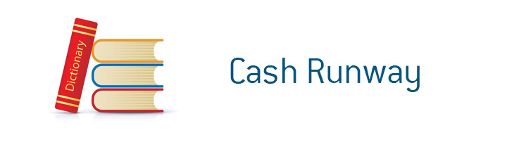 D.M. Financial Dictionary - Cash Runway - What is the meaning of the term?