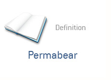 finance term definition - permabear