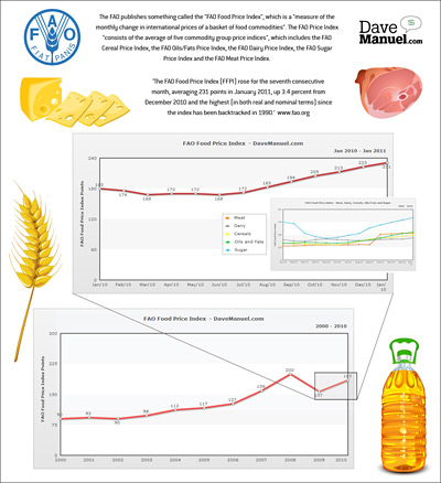 Food Price Index Infographic - Small