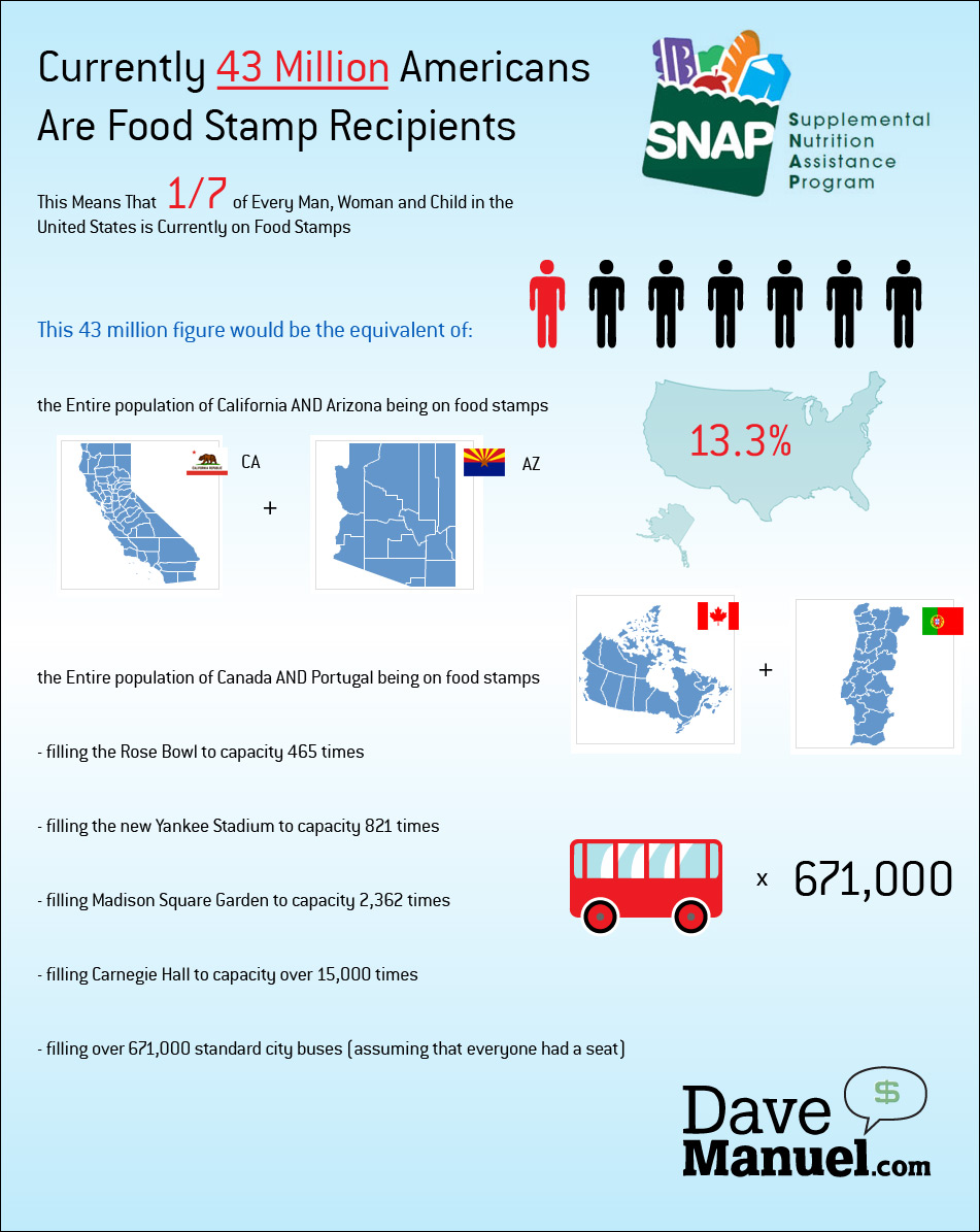 Food Stamp Usage in The United States - SNAP - Supplemental Nutrition Assistance Program - 43 Million Americans are Food Stamp Recipients - Illlustration - Infographic