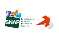 Supplementa Nutrition Assistance Program (SNAP) usage on the rise - Illustration