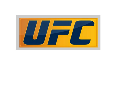 The UFC logo - Blue and yellow version.  Year is 2017.